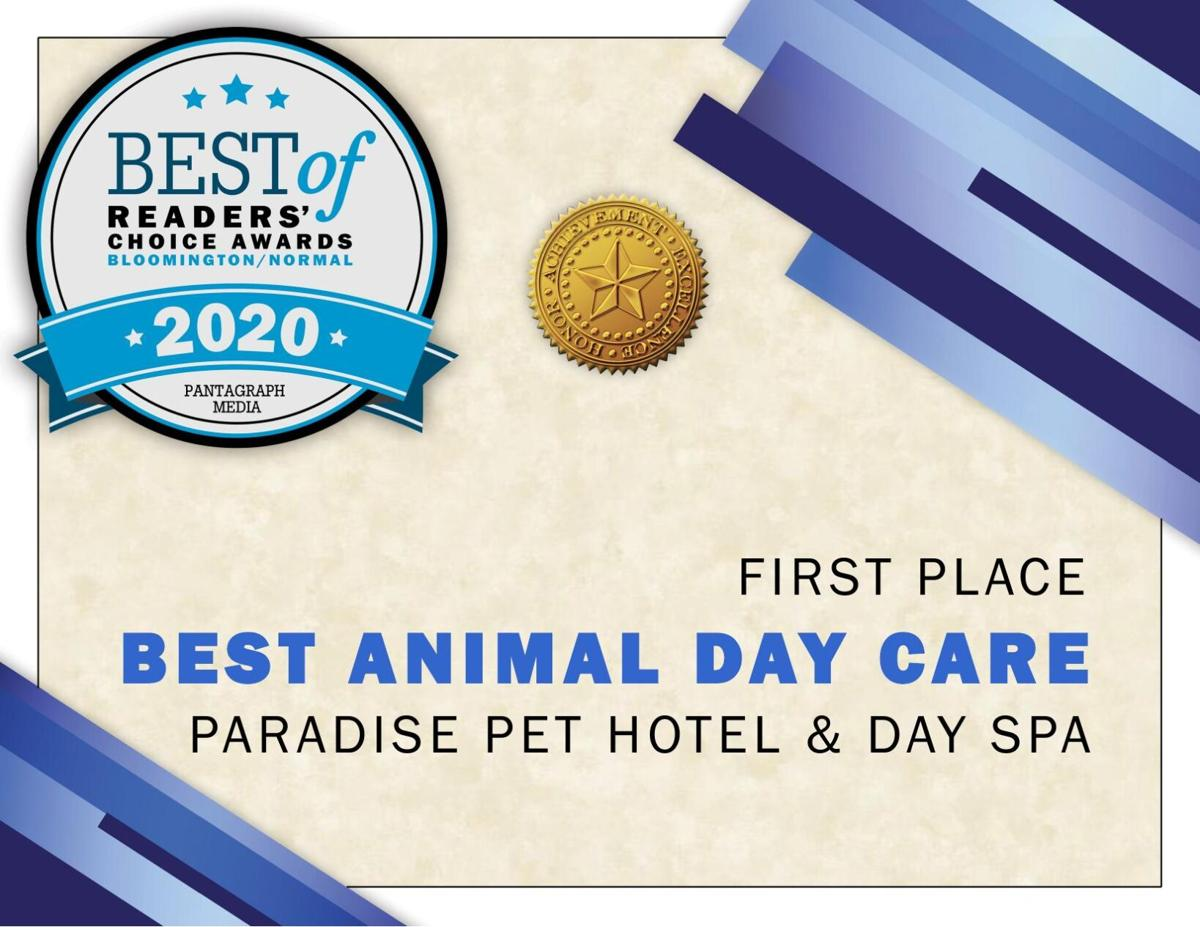 Best Animal Day Care
