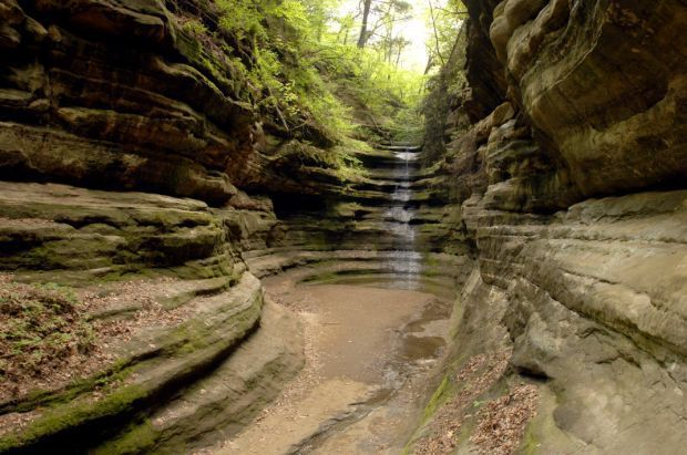 Starved Rock's French Canyon