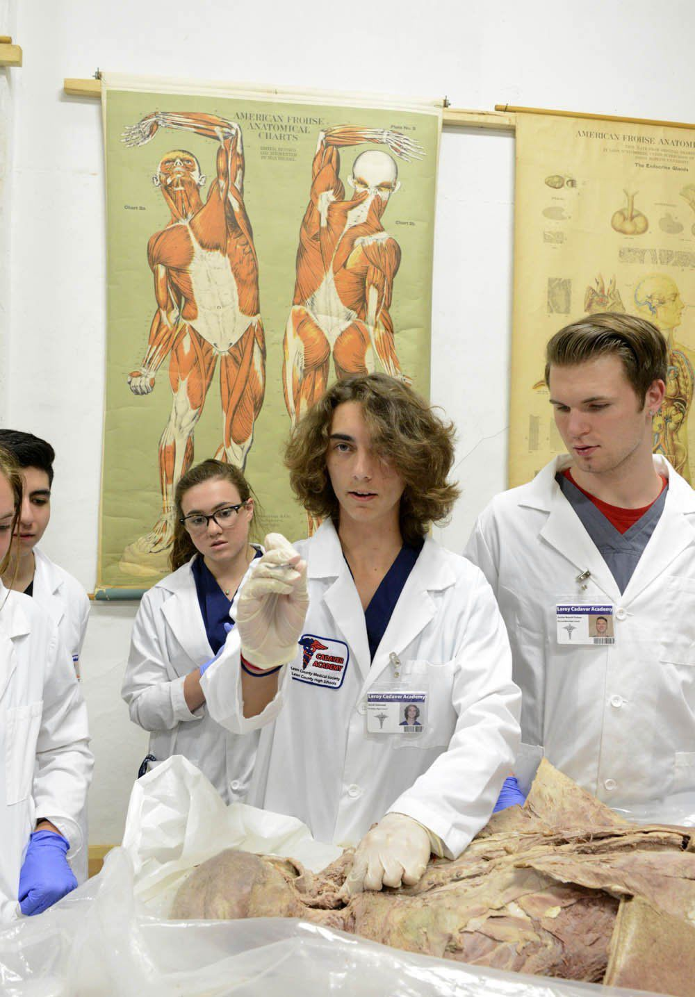 042817 blm lif 1cadaver Hands on Cadaver lab experience benefits students