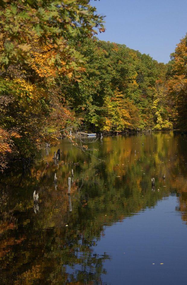 Ac Auto Parts >> Photos: Central Illinois autumn scenery : Gallery