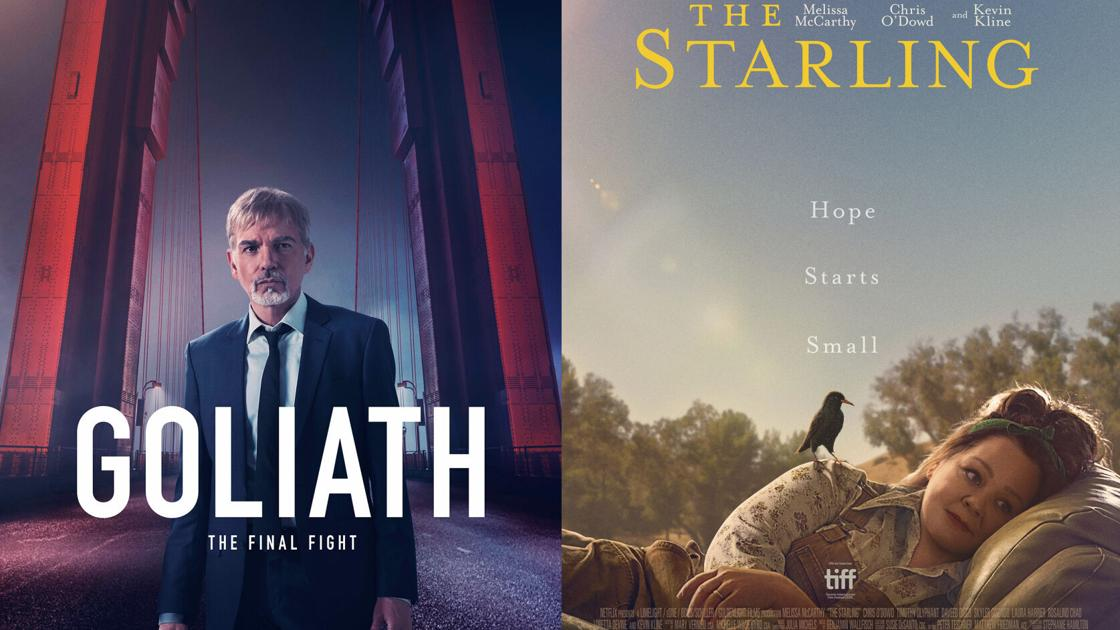 New this week to TV, streaming and more: 'The Starling,' Diddy and Billy Bob Thornton | Entertainment - Illinoisnewstoday.com