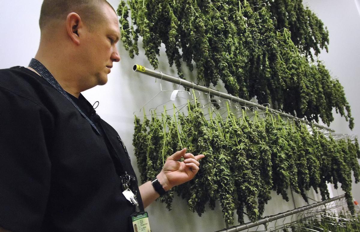 060119-blm-loc-11marijuana