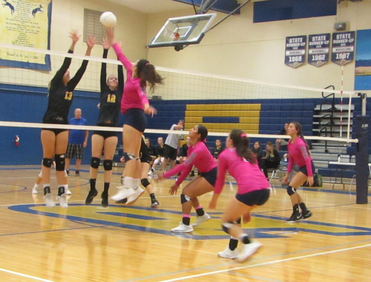 PHS volleyball 1