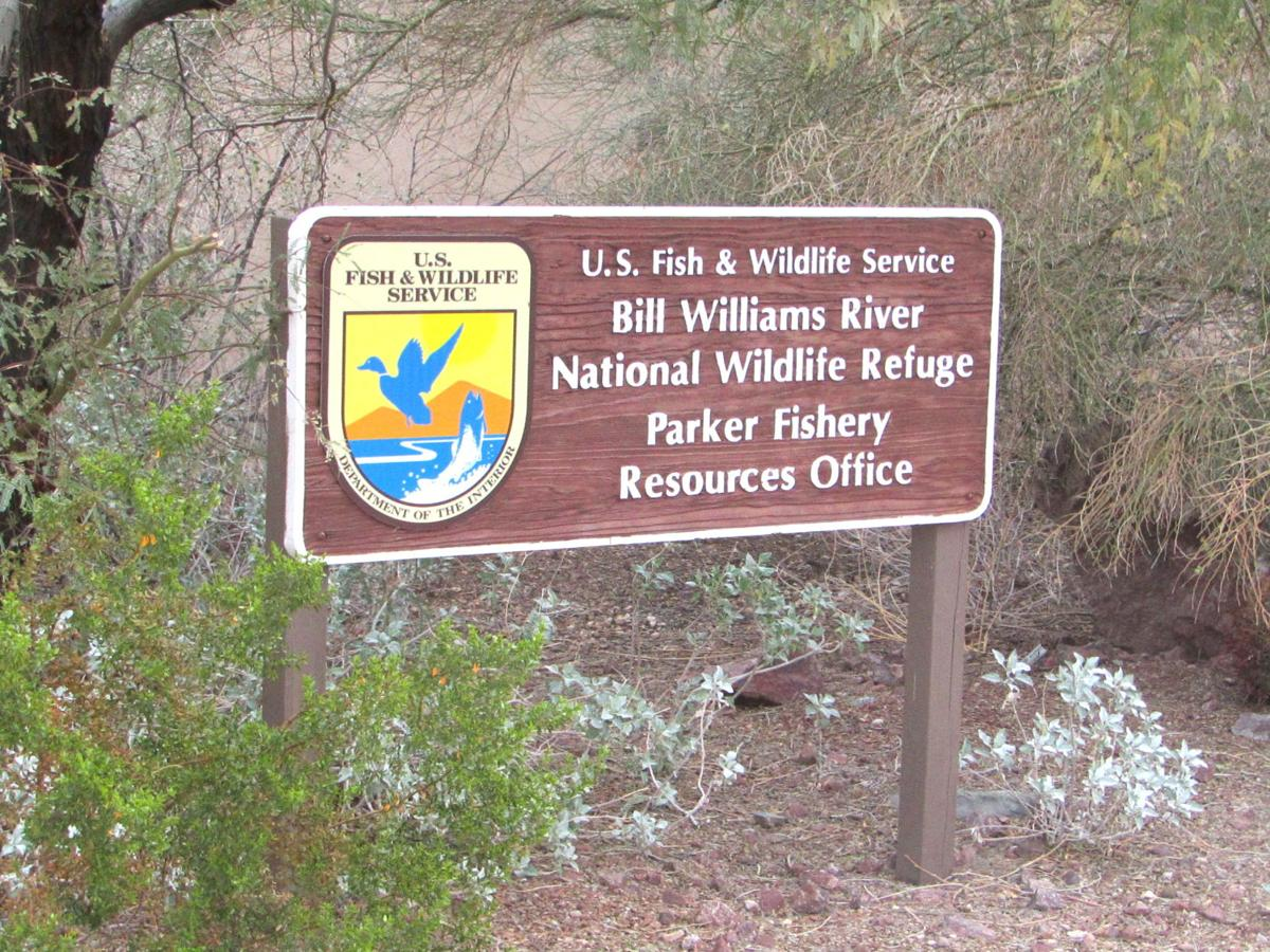 Bill Williams NWR feeling the effects of the government