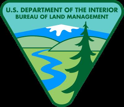 BLM logo