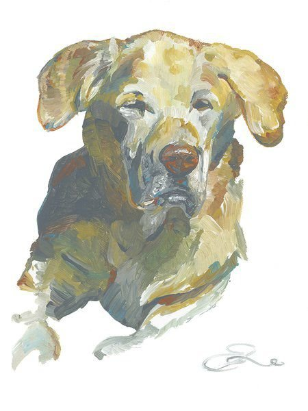 Art with an eye on dogs PV's Bark in the Park is next weekend