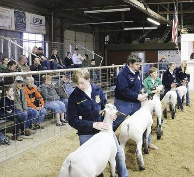 Youth, livestock at center of show