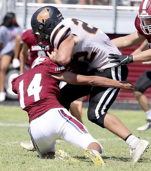 Savages fall at home to Wayne in district opener