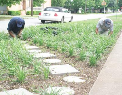 Landscaping guys