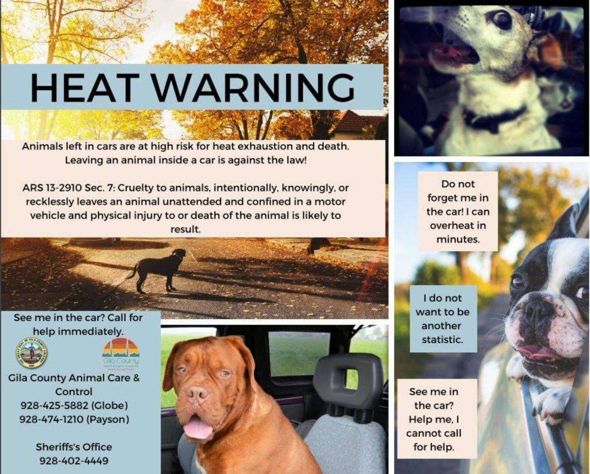 Heat Warning for Pets
