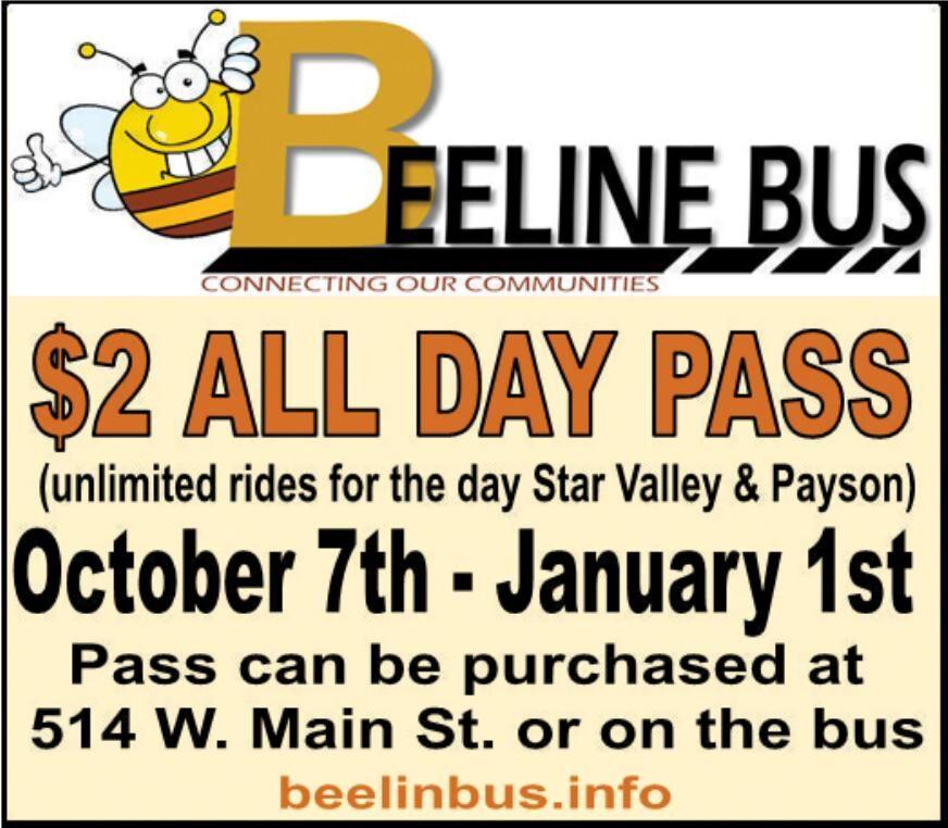 Beeline Bus