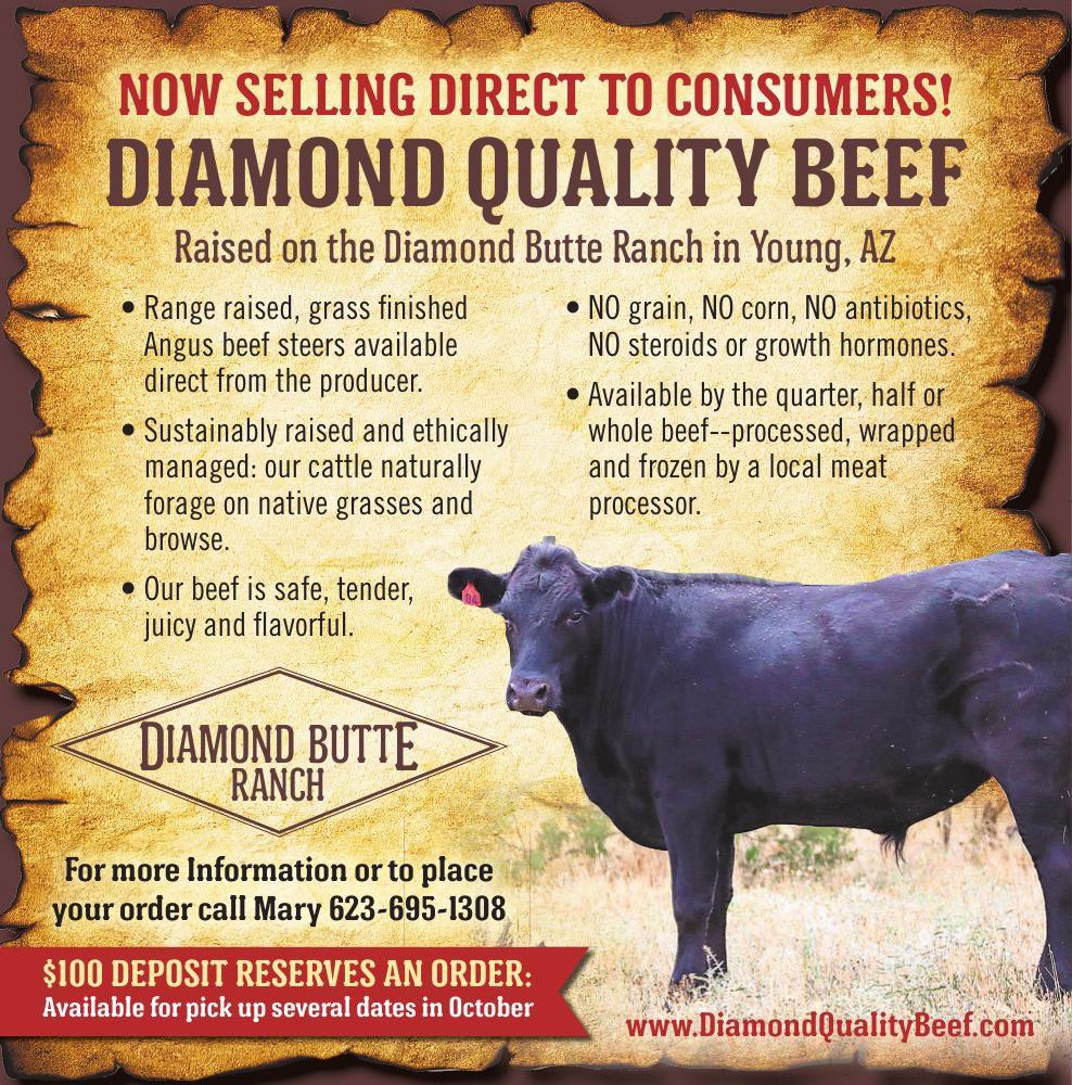 Diamond Butte Ranch