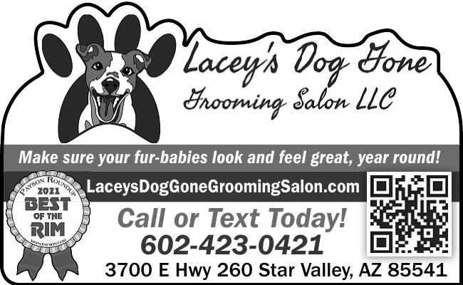 Lacey's Dog Gone Grooming Salon