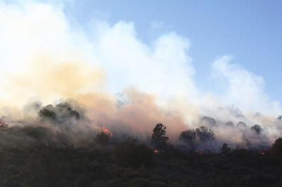 Controlled burn reduces fire danger