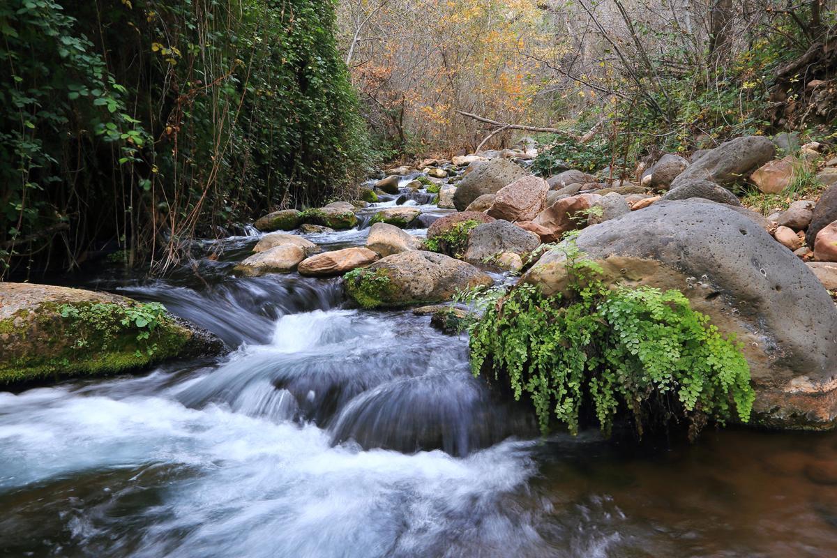 Fossil Creek Trailhead hike