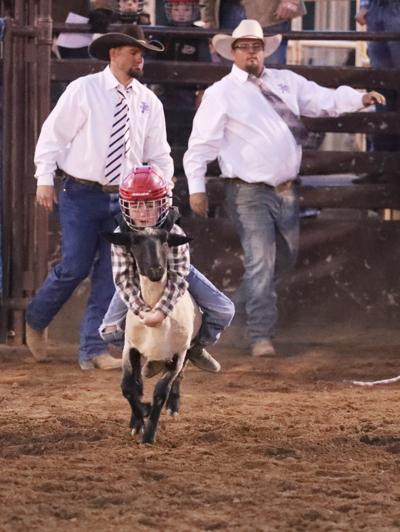 Young Rim Country Riders Rule Gary Hardt Memorial Rodeo