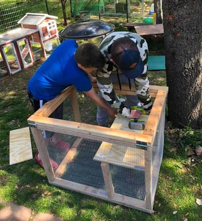 Sarah Ellen' sons building the rabbit hutch heads down