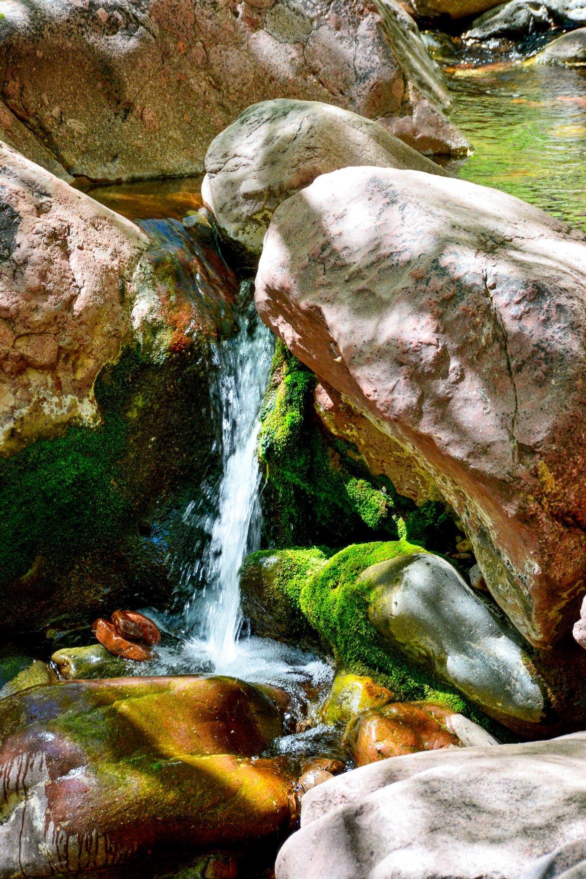 Pine Creek Trail TNB DSC_6561 4K res personal photo Pia Wyer.jpg