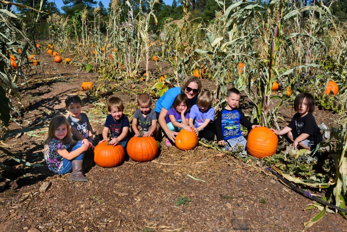 It\'s pumpkin time at Payson Community Garden | Payson ...