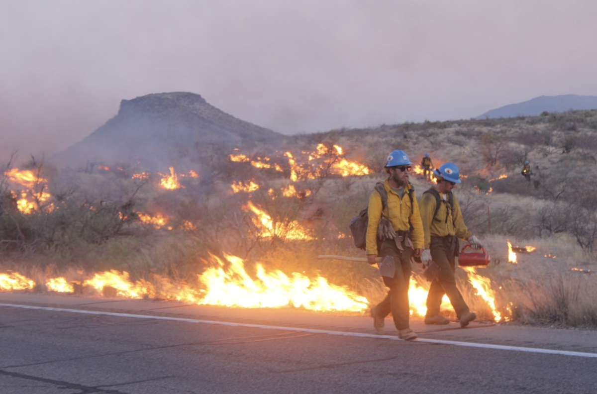 Mescal fire firefighters conducting burn operations Tonto National Forest