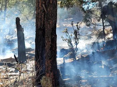 pine brush fire