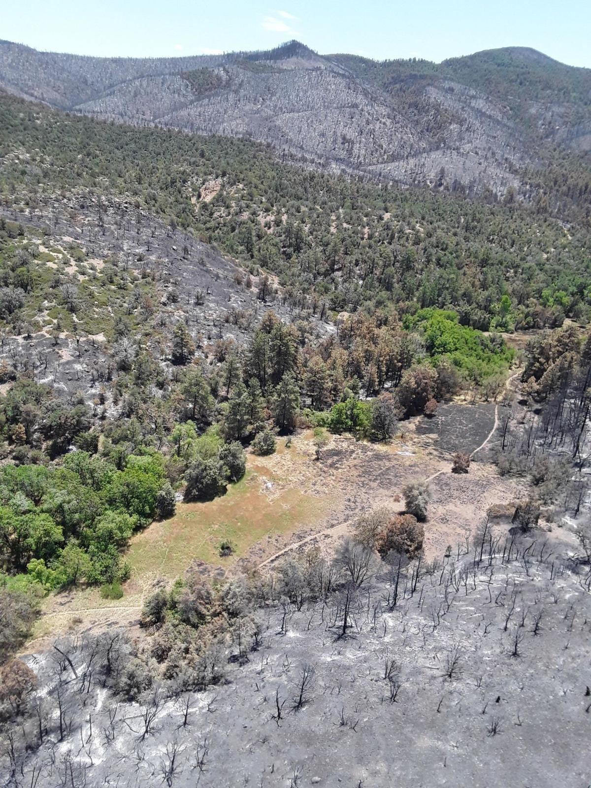 Woodbury Fire - A photograph of Reevis Ranch taken by a BAER team member from a helicopter