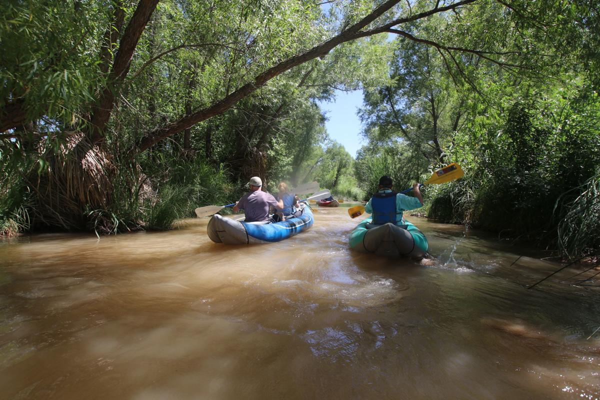 Verde River water to wine