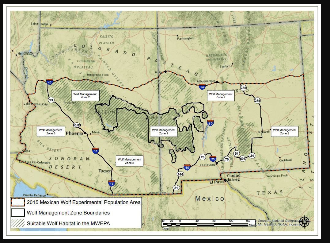 Wolf reintroduction map