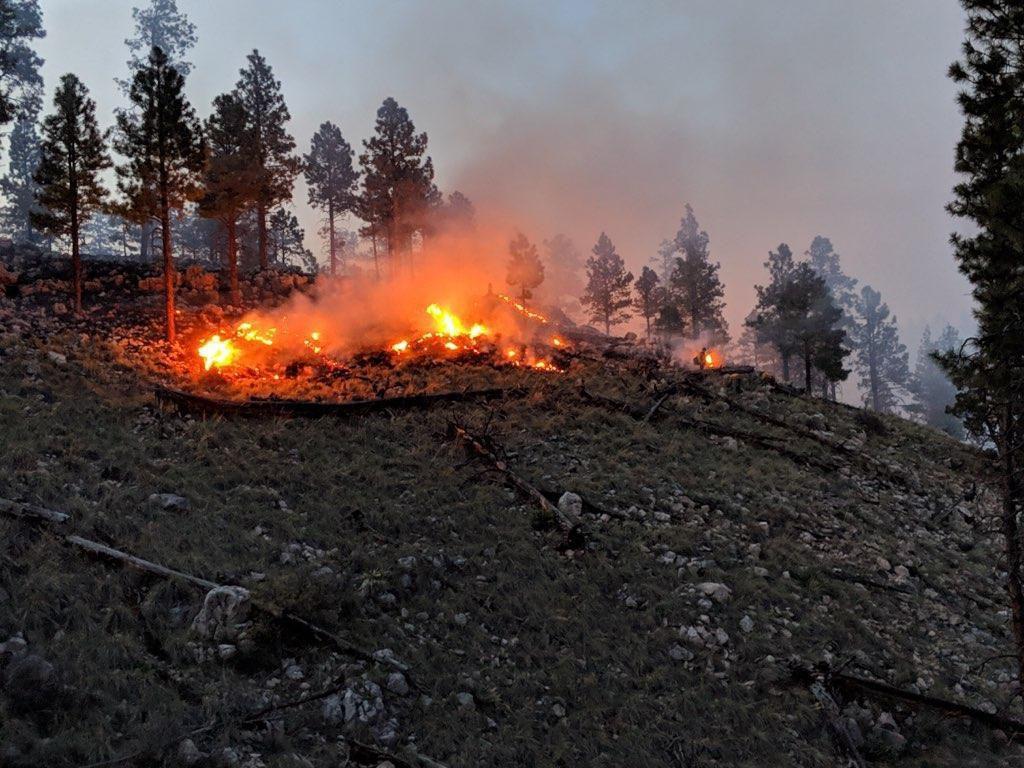 Hoyle Fire