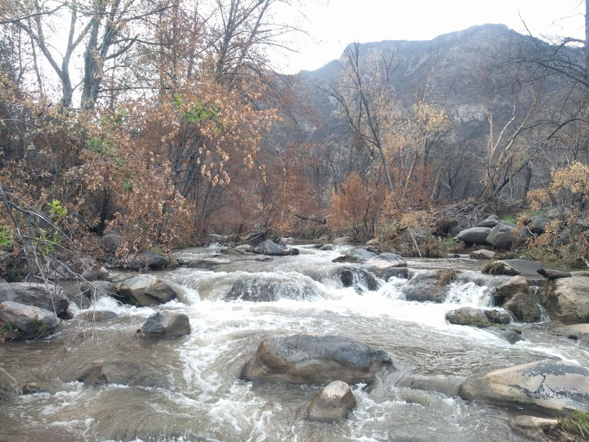 Fossil Creek fire damage