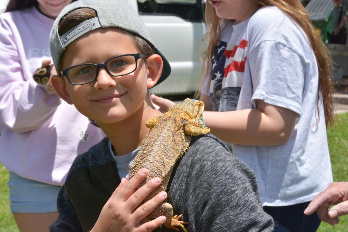 Payson Wildlife Fair