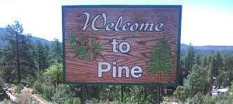 Pine Sign Greer Sigeti PSWID