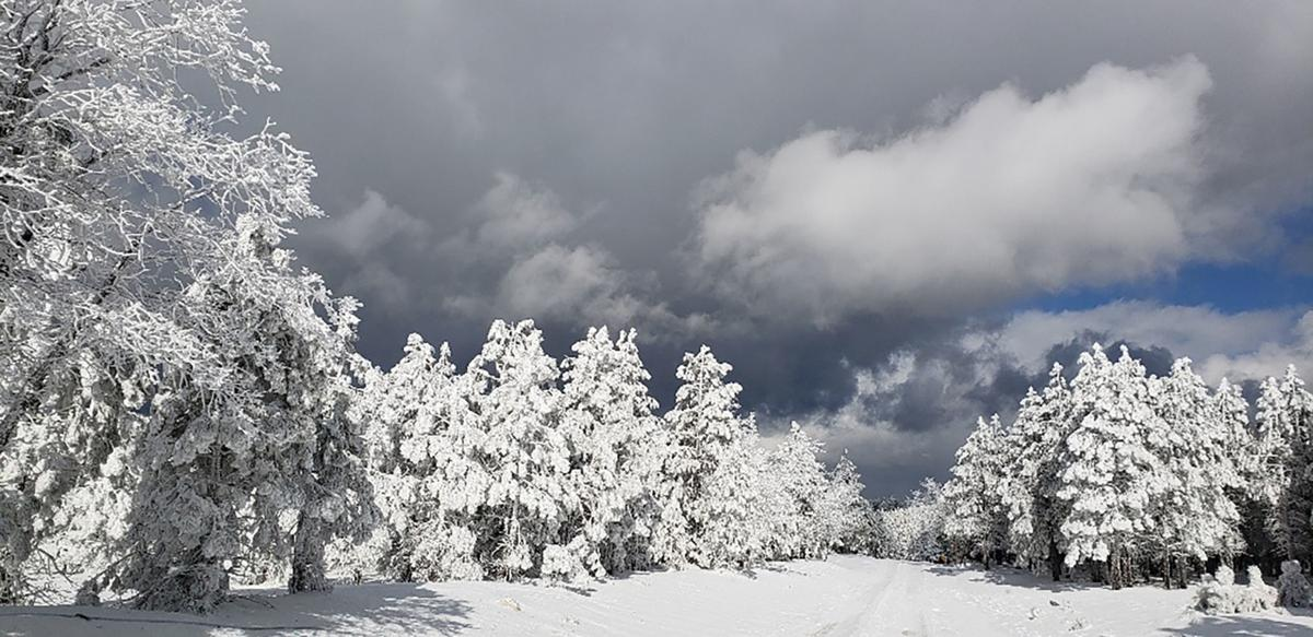 Flagstaff – 2: Payson – 0 for snow totals | Local News ...