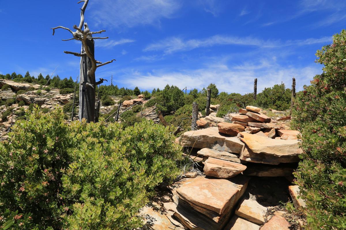 Arizona Trail and the Highline Trail