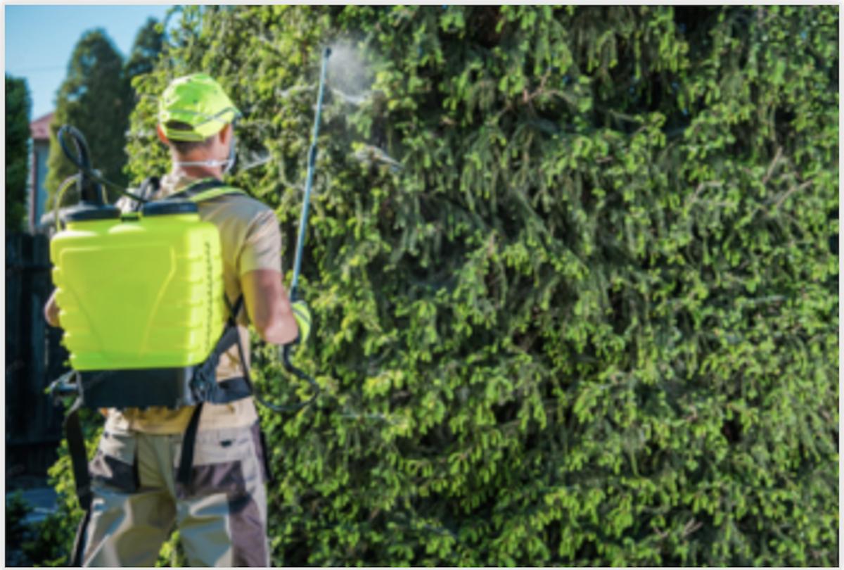 Example of spraying Arizona Wildfire Defense spray