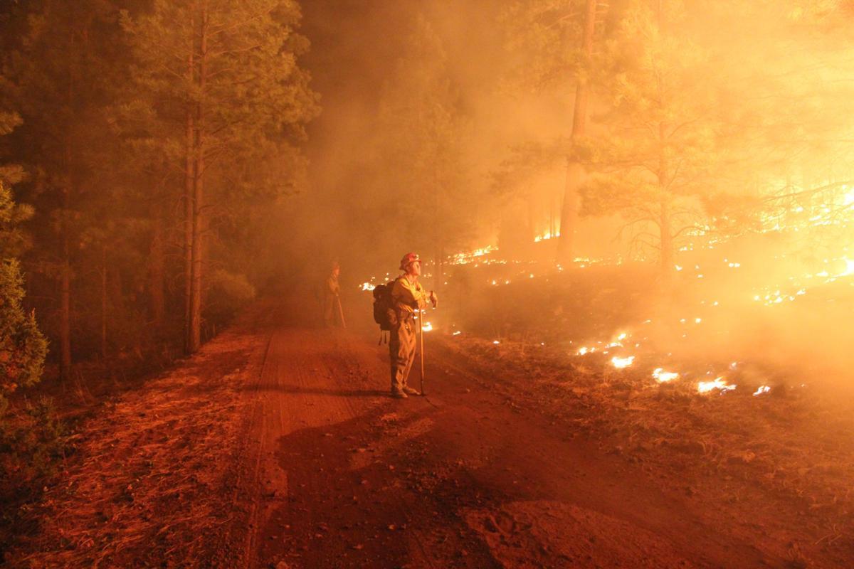 Wallow Fire burnout