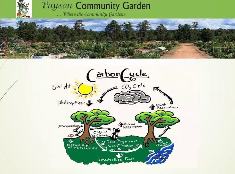 chart for gardening item