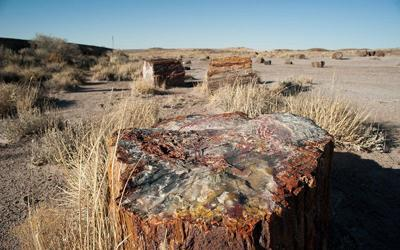 Helium producer leases land near Petrified Forest; environmentalists worry about harm to animals, water