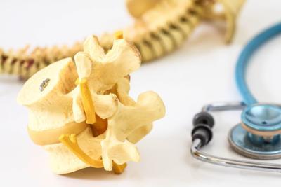 spine-disc
