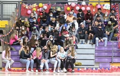 Volleyball Crowd At 11-10-20 Bourgade Catholic Game