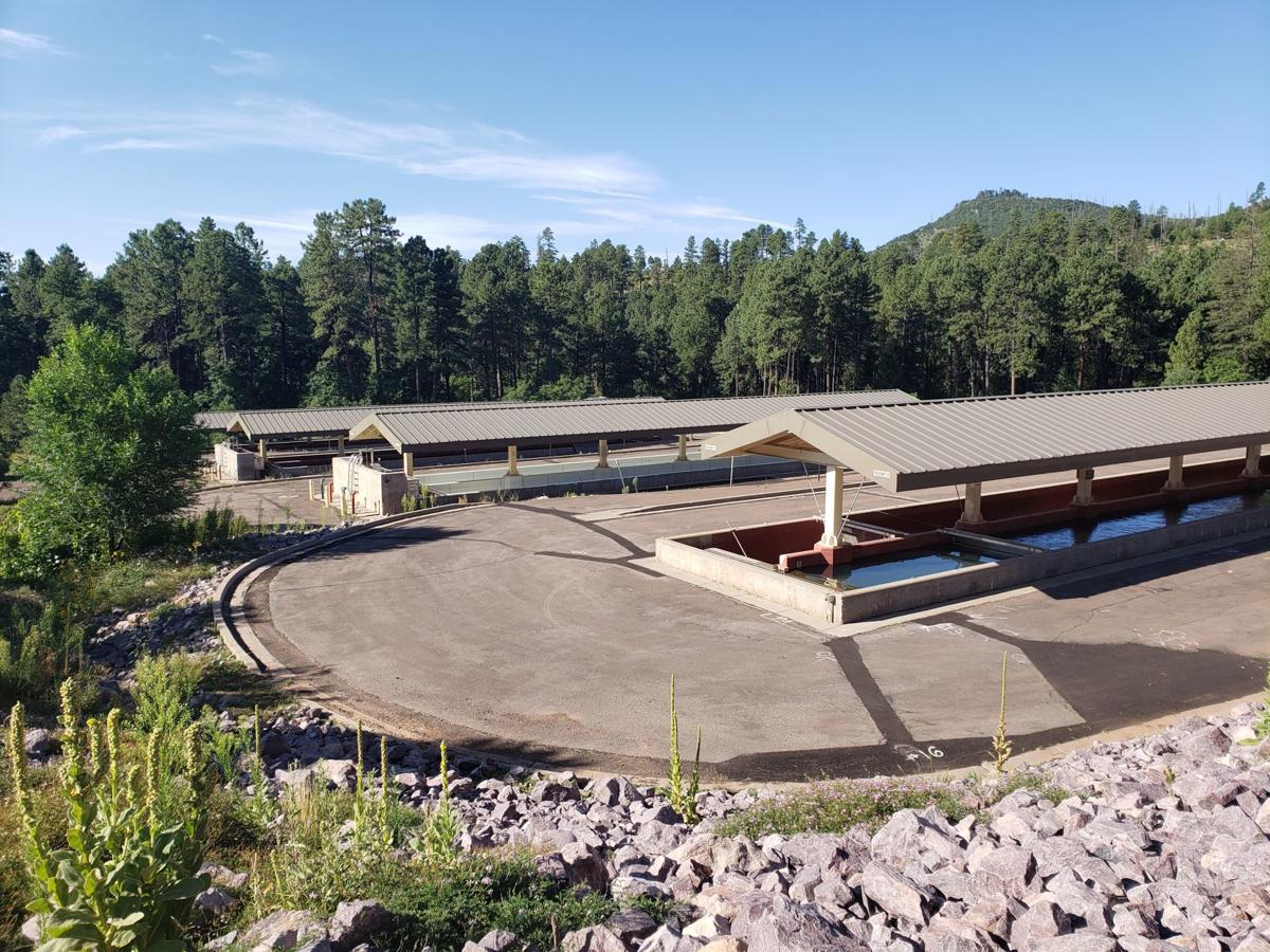 A view of several of the raceways at Canyon Creek Hatchery.jpg