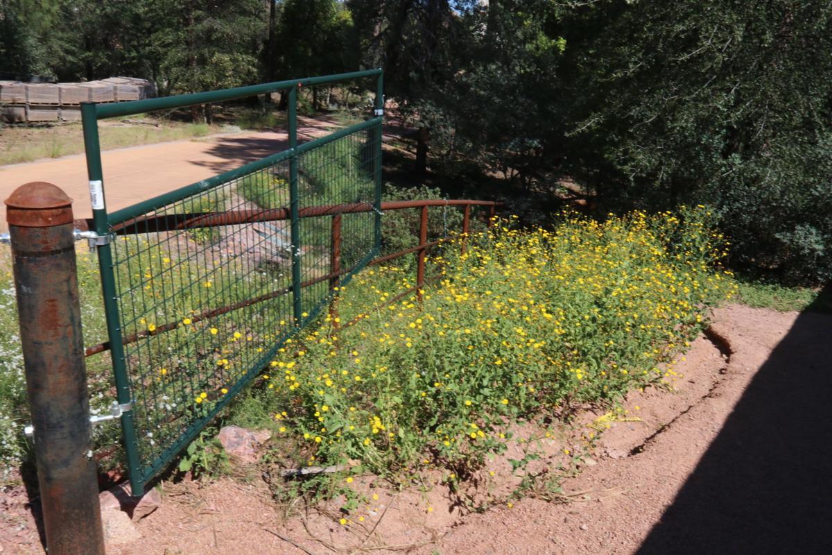 Phoenix trail access - Gate at trailhead at end of Phoenix Street