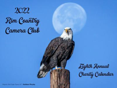camera club calendar cover