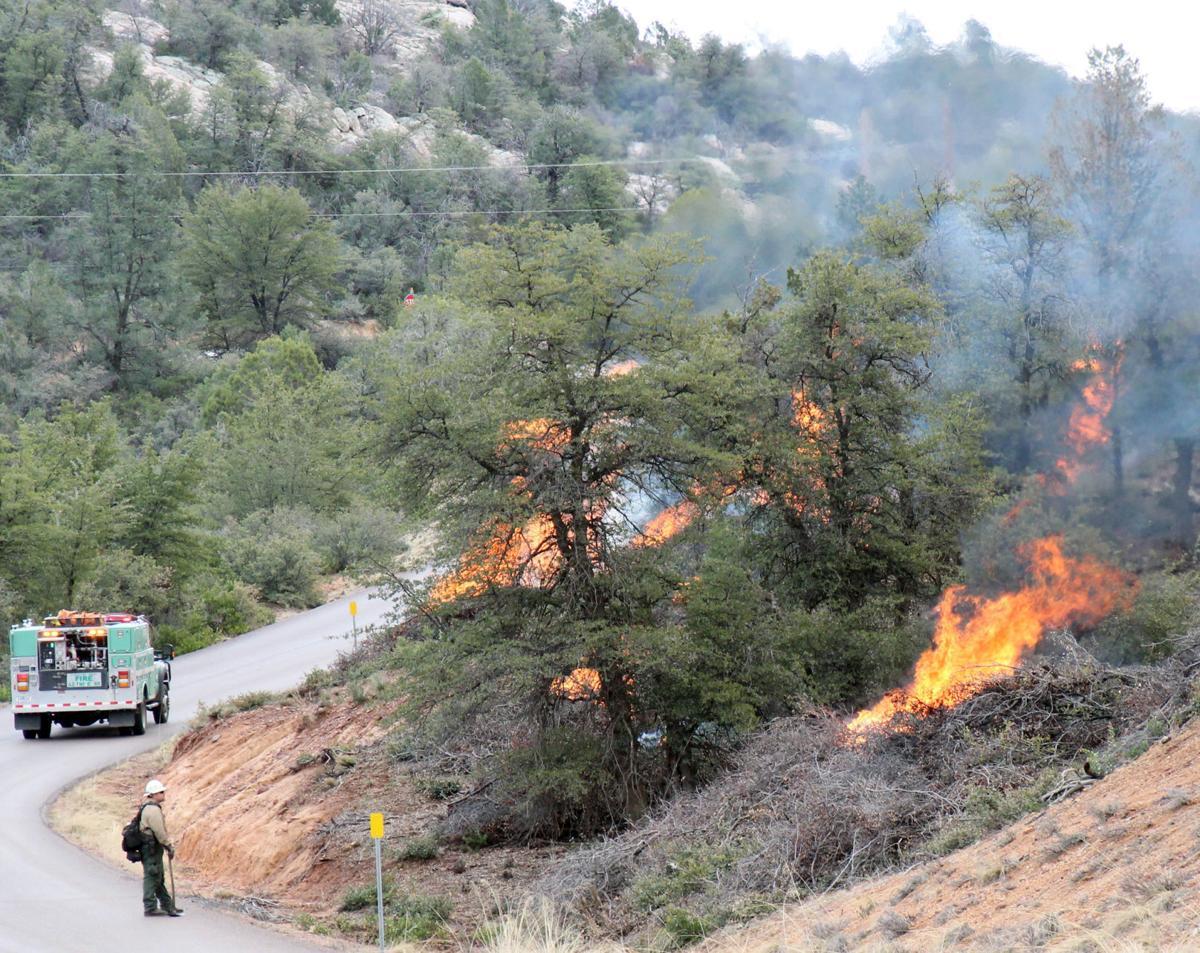 Beaver Valley Prescribed Burn