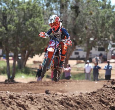 Grand Prix Jumper