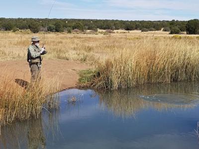 Silver Creek fisherman