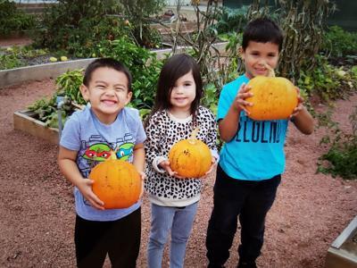 Kids holding pumpkins