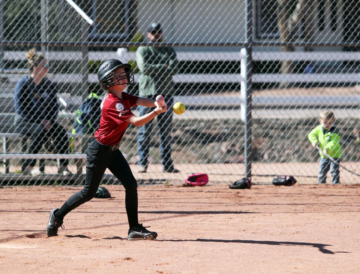 Little League Softball Connection Tryouts