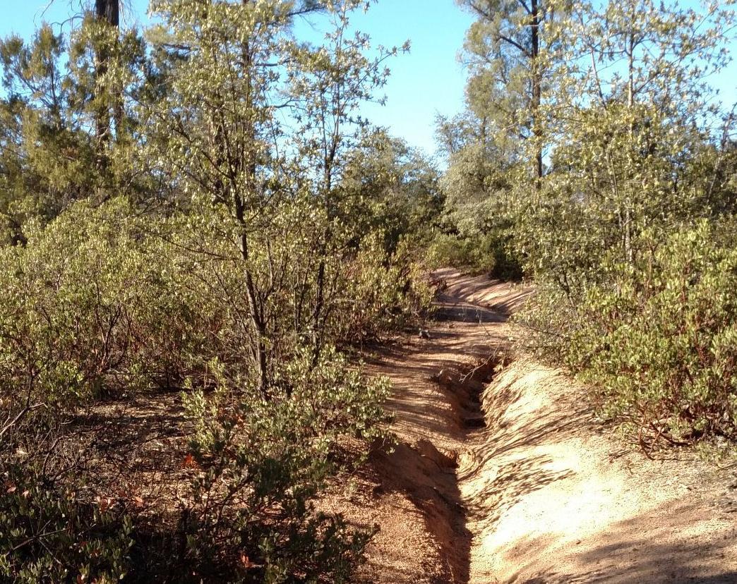 GCC trail