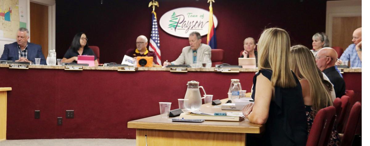 Town council with DeSchaaf